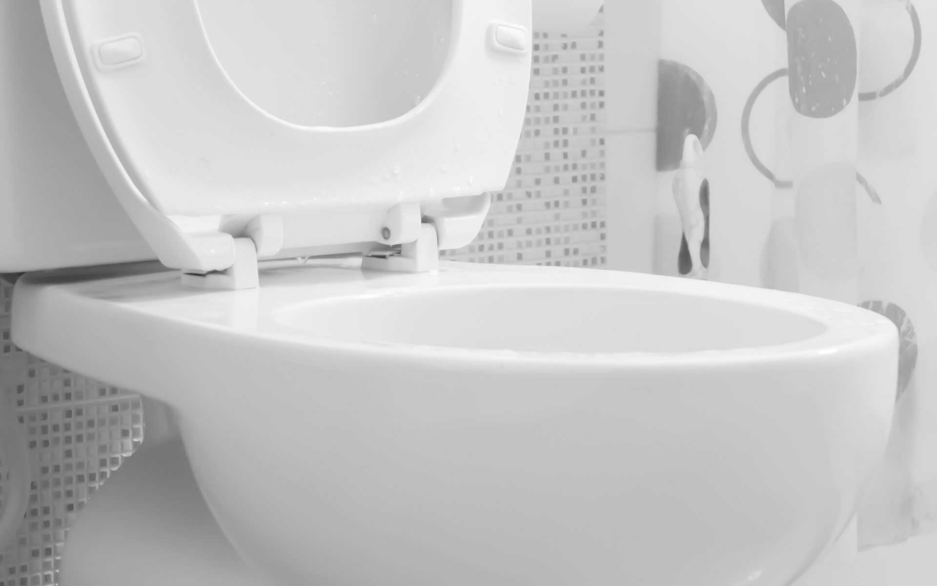 Cocolalla Toilet Repair